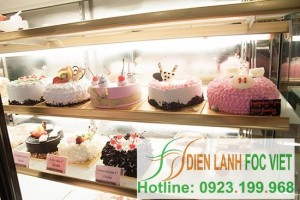 Dịch vụ lắp đặt kho lạnh kem bảo quản chuyên nghiệp
