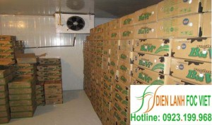 Dịch vụ lắp đặt kho lạnh bảo quản sữa