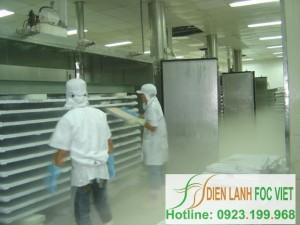 Kho lạnh bảo quản thủy sản-Tiến trình lạnh đông thủy sản