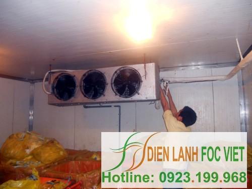 lắp đặt kho lạnh bảo quản nông sản