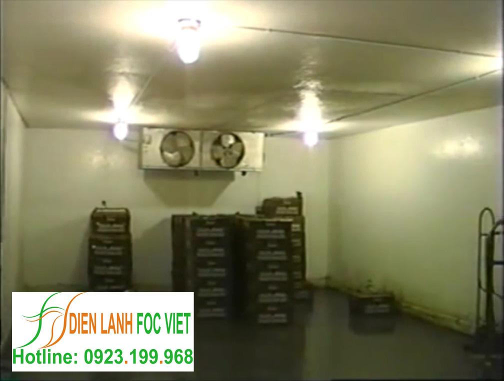lắp đặt kho lạnh rau quả sử dụng dàn lạnh công nghiệp