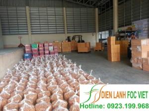 Phương pháp thu hoạch và bảo quản nhãn-Kho lạnh bảo quản nhãn