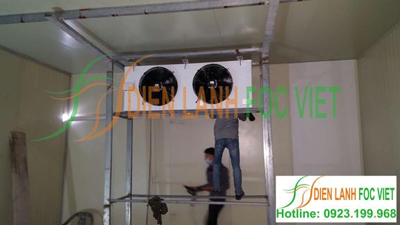 lắp đặt nhà lạnh nuôi trồng nấm tại Bắc Ninh, dự án nuôi trồng nấm sò. Hệ thống giá kệ được thiết kế để treo các bịch nấm.
