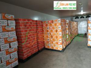 Quy trình lắp đặt kho lạnh bảo quản nông sản