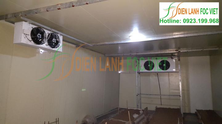 Foc Việt chuyên thiết kế nhà lạnh trồng nấm tại các tỉnh miền Bắc. Lắp đặt kho lạnh trồng nấm để trữ nấm chờ tiêu thụ.