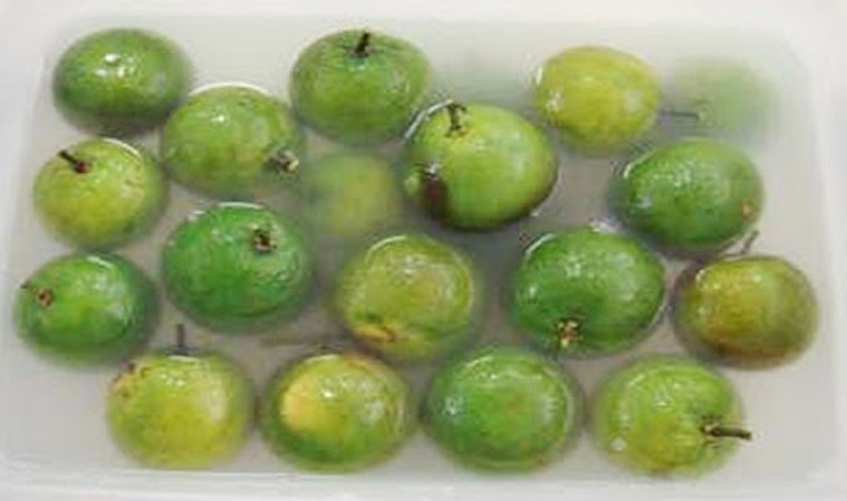Kỹ thuật bảo quản cam bưởi được lâu sau thu hoạch sử dụng màng chitosan