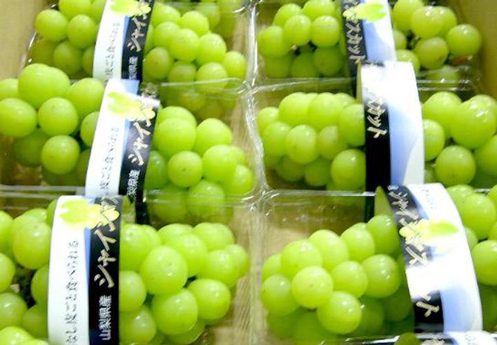 nhiệt độ bảo quản trái cây