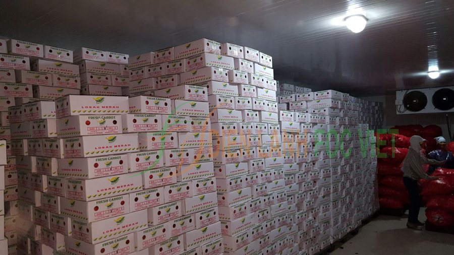 đẩy mạnh lắp đặt kho lạnh để hoàn thiện chuỗi giá trị nông sản